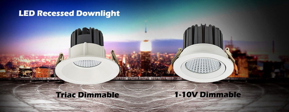 China best LED Gimbal Downlight on sales