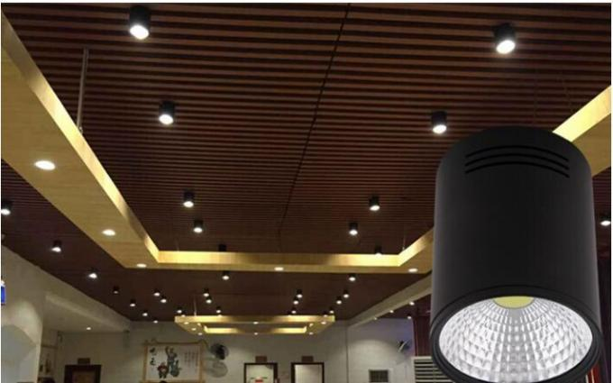 High Power 30W Surface Mounted Led Downlights Bathroom Led Ceiling ...